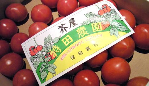 持田農園フルーツトマト