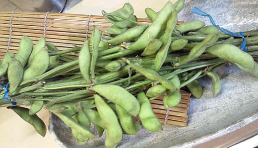 枝つき枝豆