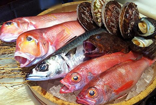 新鮮お魚たち