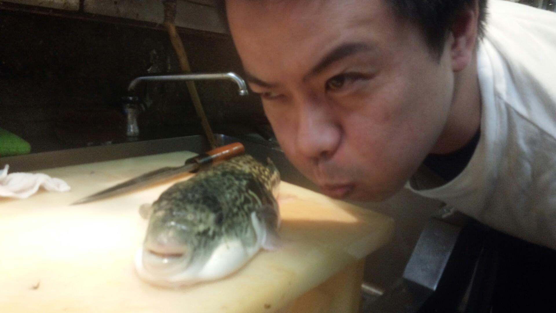 fugu321 (1)