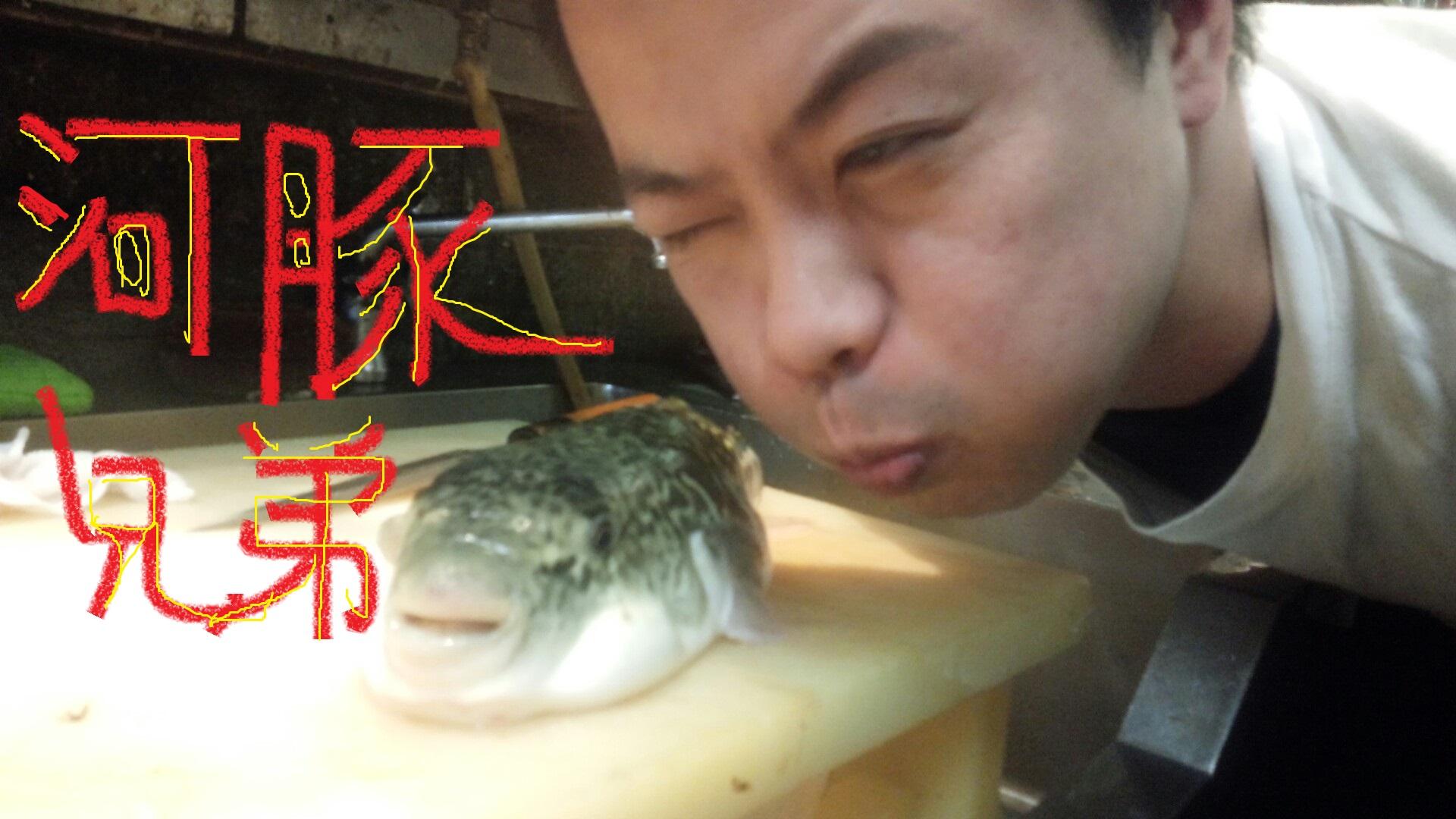 fugu321 (5)
